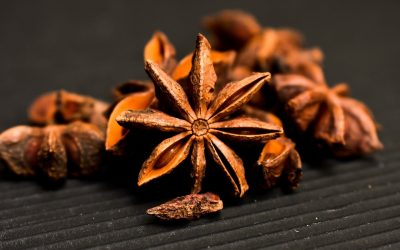 Antiviral Activity of Star Anise